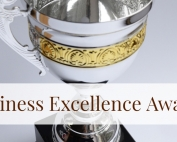 Biz Excellence Award Graphic4
